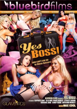 Bluebird Films Yes Boss! Paige Ashley Stacey Saran, Black Hair, Character & Uniform