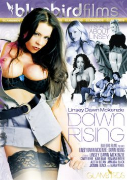 Dawn Rising Aletta Ocean Cindy Behr, Fishnet, Pierced Bellybutton